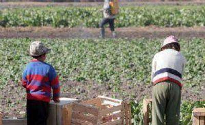 Aseguran que el trabajo infantil persiste en la temporada de cosechas en San Juan