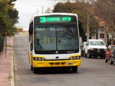 Qué servicios afectará el paro del transporte