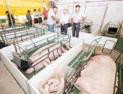 Inza visitó un emprendimiento porcino beneficiado con fondos de Nación