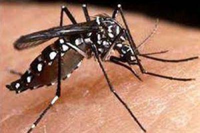 Prevención en centros turísticos para alertar sobre el chikungunya