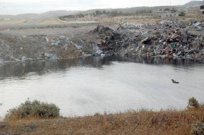 Los residuos pesqueros ser�n enterrados en una cava especial a 25 km. de Comodoro
