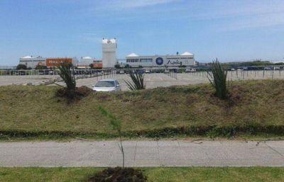 Comienza la segunda etapa de obras en Punta Mogotes