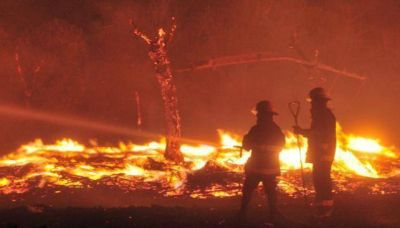 Habrá menos bomberos rentados en 2015