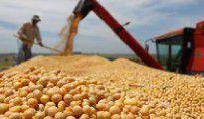 La soja org�nica alcanz� en 2014 un valor m�ximo de 935 d�lares la tonelada