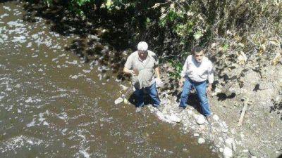 Acusan a una papelera por arrojar contaminantes a la cuenca Salí-Dulce