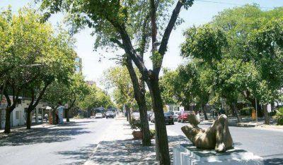 Comienza la segunda etapa de evaluación de forestación en comunas