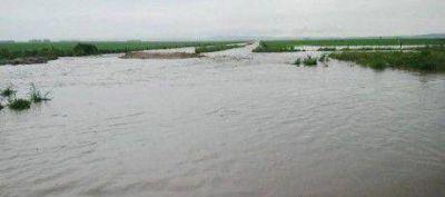 Zonas rurales inundadas en Buenos Aires: �reina la anarqu�a y la insuficiencia�