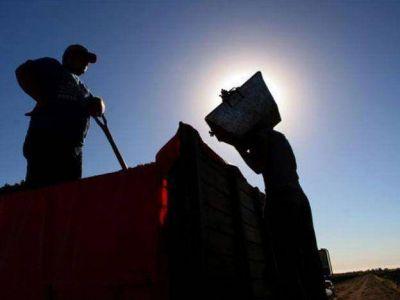 Obreros vitivinícolas se suman al reclamo de los productores del sector