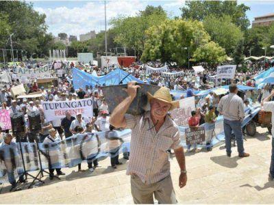 Este lunes el Gobierno de Mendoza saldrá a comprar vino sobrante por licitación