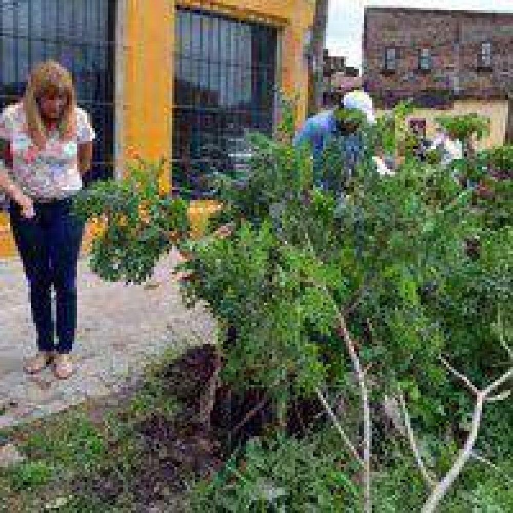 Aída Ayala constató el trabajo inmediato de cuadrillas después de la tormenta