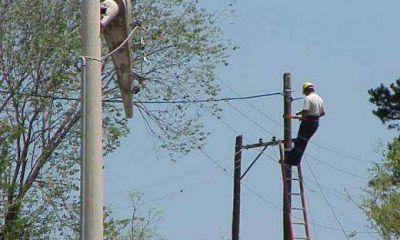 Cooperativas rechazan congelar tarifas de electricidad por segundo año consecutivo