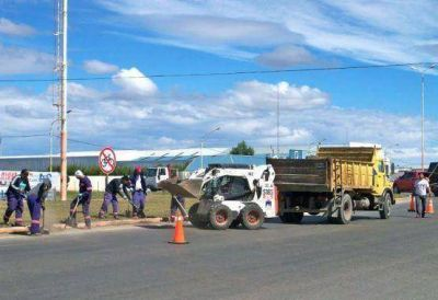 Continúan los trabajos de forestación y limpieza sobre Autovía