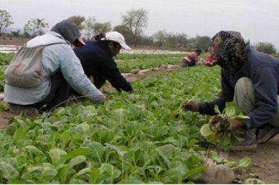 Tabaco: solicitan mantener el Impuesto Adicional de Emergencia al 7%