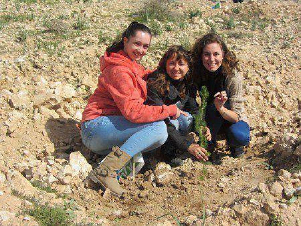 """El mundo judío celebra T""""U Bishvat, fiesta ecológica conocida como """"el Año Nuevo de los Árboles"""""""
