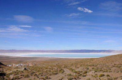 Olaroz – Cauchari – Sales de Jujuy y Gestión Ambiental aseguran la conservación de la reserva