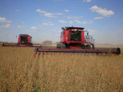 Estiman que habrá una cosecha récord de soja de 57 millones de toneladas