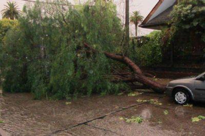 Una tormenta de lluvia, viento y granizo causó destrozos en Concepción del Uruguay