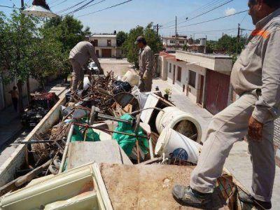 Profundizan acciones contra el dengue y chikunguña