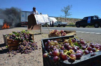 Viñateros presionan para que se saque el sobre stock de vinos
