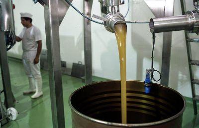 Apicultura | Buenas Prácticas: Auditorías de calidad en apiarios de la Cuenca del Salado