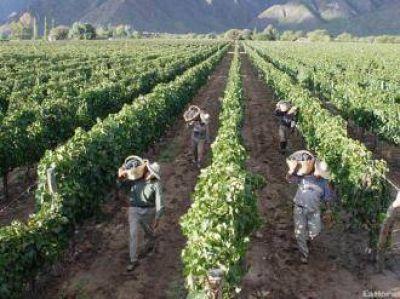 Vitivinícolas acordaron un 30,7% de incremento salarial