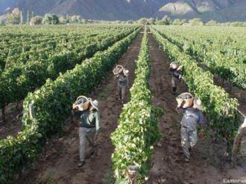 Vitivin�colas acordaron un 30,7% de incremento salarial