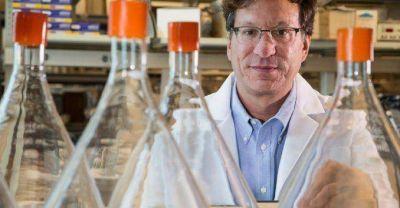 Cient�ficos dieron con una droga que podr�a servir como cura del Sida