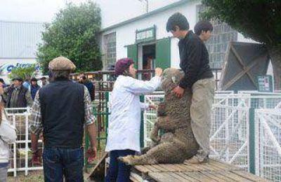 Comienza la Exposición Ganadera en la Rural