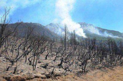 """Cholila: Aseguran que está """"controlada"""" una de las cabezas del incendio"""
