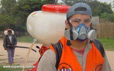 Salta: Preocupación por el avance en la frontera de casos de fiebre Chikungunya