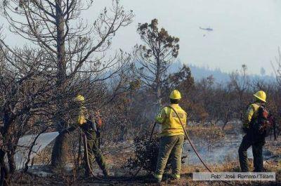 No registra avances el incendio de bosques nativos en Cholila