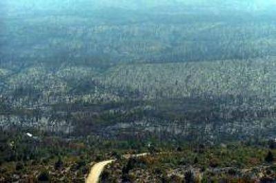 Est� controlado el incendio que devast� unas 27 mil hect�reas en los bosques de Cholila