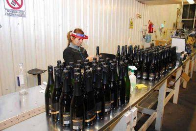 Solo 17 bodegas locales están elaborando vinos