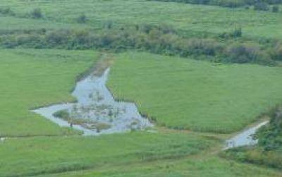 Prevén millonarias pérdidas en los campos saturados y sin drenaje