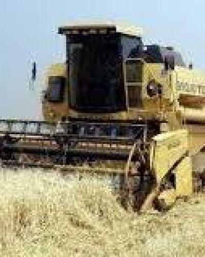 Chemes afirmó que en Entre Ríos hay un alto acatamiento al cese de comercialización de granos