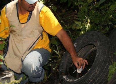 El Ministerio de Salud dictó un alerta epidemiológico por dengue