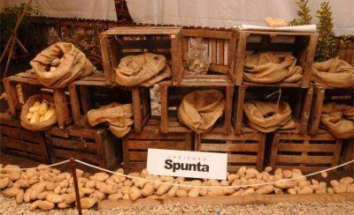 Cuatro d�as de celebraci�n en Otamendi por la 38� Fiesta Provincial de la Papa