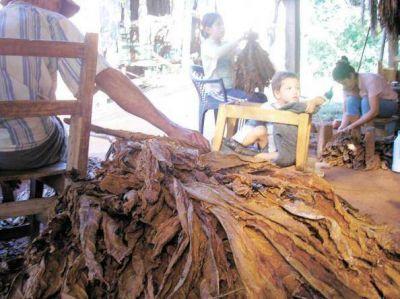 Denunciaron que ingresan ilegalmente tabaco desde Brasil