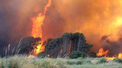 Importante operativo no logra controlar el incendio de Sierra de los Padres