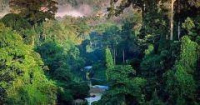 La Iglesia católica en defensa de la Amazonia