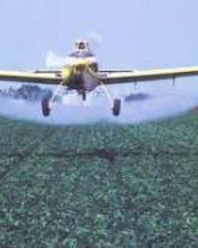 No está previsto retomar el debate por la ley de Agroquímicos en el Senado