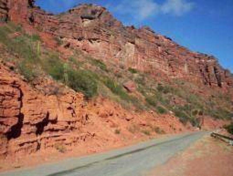 Optimista, el gobierno dice que repunt� el turismo en los �ltimos d�as