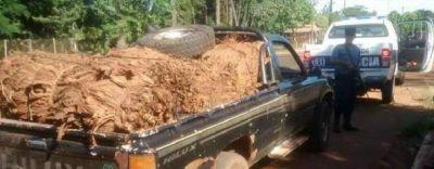 Decomisaron m�s de mil kilos de hojas de tabaco en El Soberbio