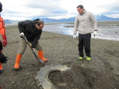 Se realizó una nueva jornada de limpieza costera en Bahía Golondrina
