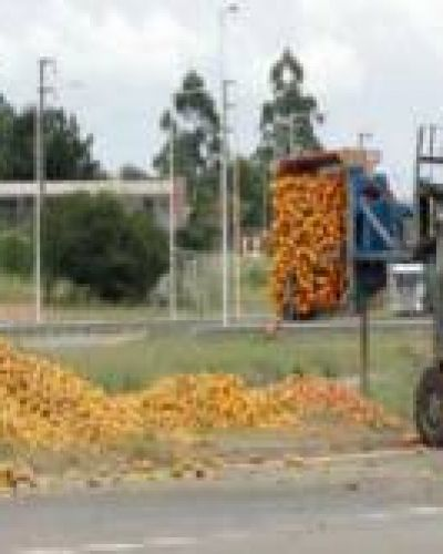Citricultores se manifestaron en la Autovía 14 por la crisis del sector