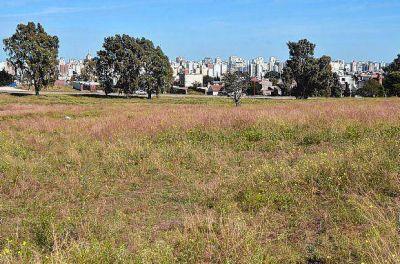Reunión en el Concejo y nueva promesa de tierras para los beneficiarios del Pro.Cre.Ar