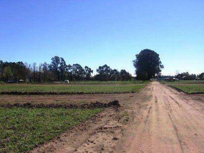 Loteo de Corpico: salen quince terrenos a la venta