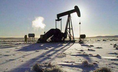 Eurnekian adquirió activos de Petrobras en la cuenca austral argentina