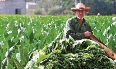 Concretar�n los pagos a productores afectados por temporales