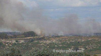 Sierra de los Padres: tras más de 24 horas de fuego, controlaron el incendio